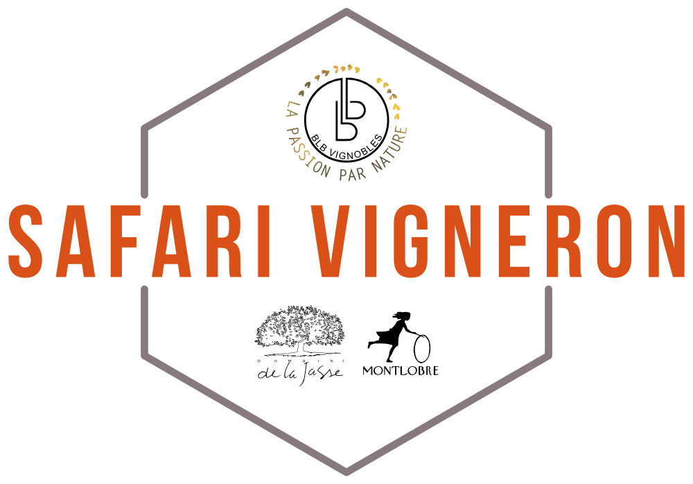 Safari Vigneron Responsable
